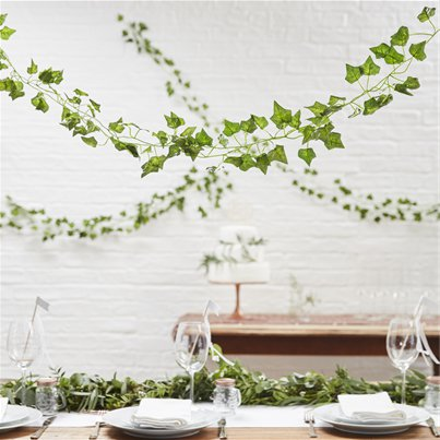 Beautiful Botanics Decorative Vines - 2m