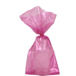 Hot Pink Small Cello Party Bags - 24cm