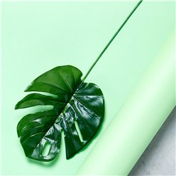Philo Spray Tropical Leaf Decorations