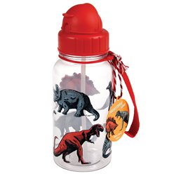 Prehistoric Dino Water Bottle - 500ml