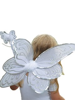 Silver & White Fairy Wings with Wand