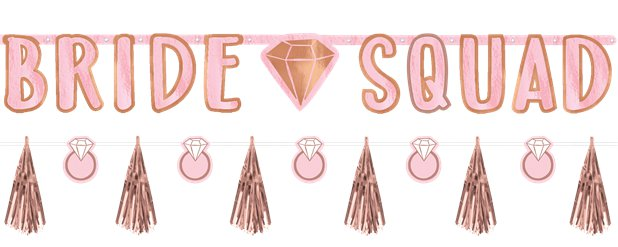 Blush Hen Party Bride Squad Banner Kit