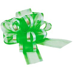 Organza Pull Bow - Green