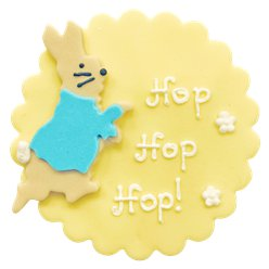 Peter Rabbit Sugar Plaque Cake Decoration