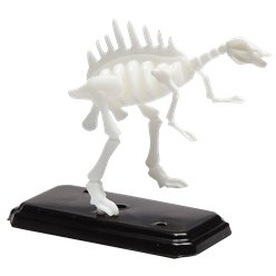 3D Dinosaur Fossil Puzzle