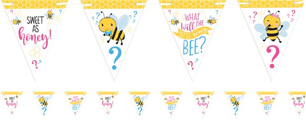 What Will It Be Paper Bunting - 4.6m