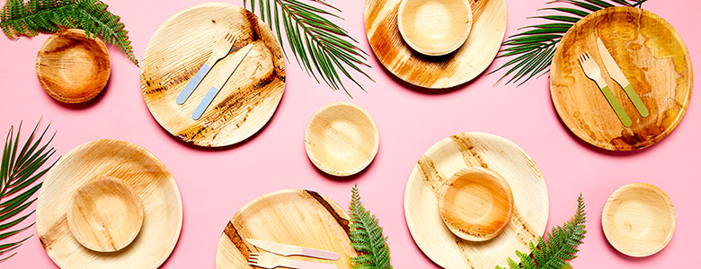 Biodegradable Party Tableware