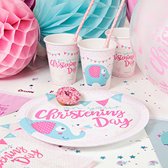 Baby Christening Party