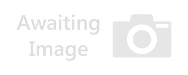Basketball Hanging Decorations - 60cm Hanging Swirls